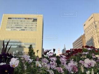 建物の上に座っている花の花瓶の写真・画像素材[2128587]