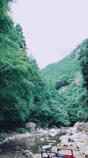 *山のなか*の写真・画像素材[2024147]