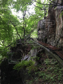 危険な山道の写真・画像素材[2024952]