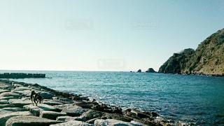 海岸で散歩の写真・画像素材[2051735]