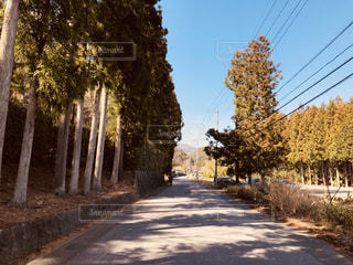 殺風景な田舎の道路。の写真・画像素材[2026502]