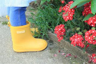 きいろの長靴の写真・画像素材[2090108]