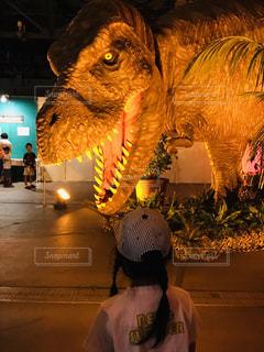 恐竜の写真・画像素材[2034307]