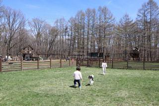 犬と子どもの写真・画像素材[2150654]