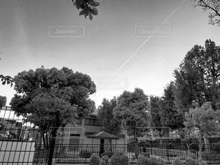 空に浮かぶ白線の写真・画像素材[2087216]
