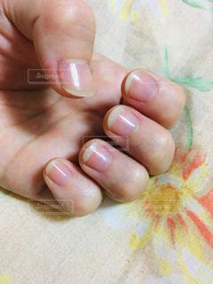 爪の写真・画像素材[2145560]