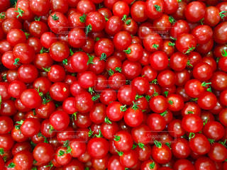 プチトマトの写真・画像素材[2171904]