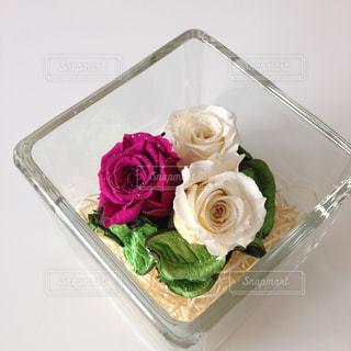 花の写真・画像素材[2034183]