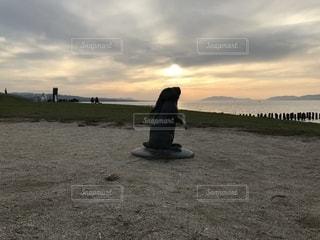 島根県立美術館 宍道湖うさぎの写真・画像素材[2036884]