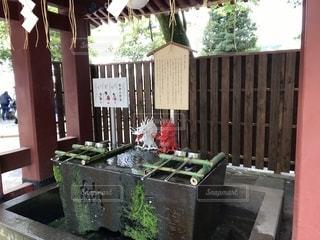 「手水舎」赤白二龍(せきびゃくにりゅう)の写真・画像素材[2082628]