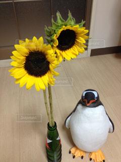 花の写真・画像素材[2055294]
