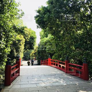 太鼓橋の写真・画像素材[2107231]