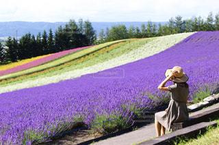 私とお花の写真・画像素材[2039535]