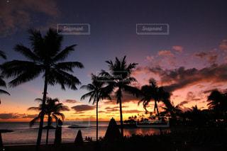 ヤシの木の隣の水の上の夕日の写真・画像素材[2514730]