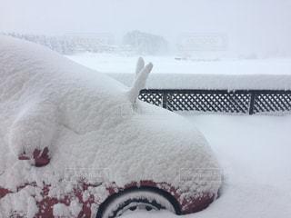 No.312050 雪