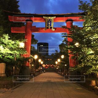 富岡八幡宮の写真・画像素材[2125531]