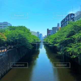 目黒川の写真・画像素材[2152510]