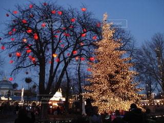 デンマークのクリスマスの写真・画像素材[2646543]