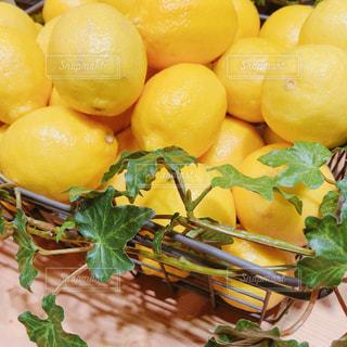 山盛りレモンの写真・画像素材[2045690]