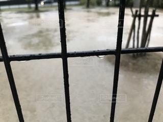 金網の雨の水滴の写真の写真・画像素材[2247634]
