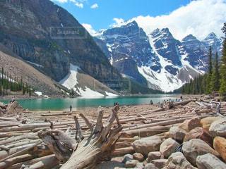 背景にモレーン湖があるロッキー山脈とたくさんの流木の写真・画像素材[2111257]