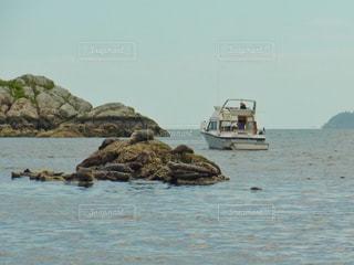 岩の上で休んでいるアザラシと小さなボートの写真・画像素材[2111376]