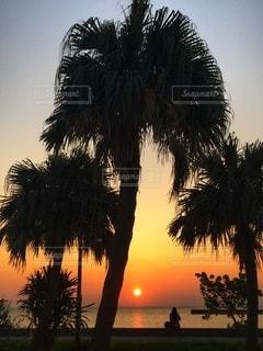 夕暮れ時のビーチサイドの写真・画像素材[2614827]