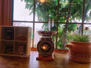 家具と植木の写真・画像素材[2088879]