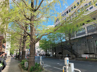 春の写真・画像素材[2061183]