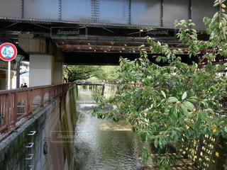 川に架かる橋の写真・画像素材[2424487]