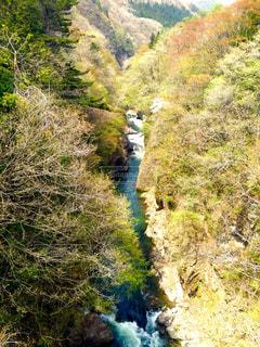 吹割の滝の写真・画像素材[2069579]