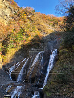袋田の滝の写真・画像素材[2246332]