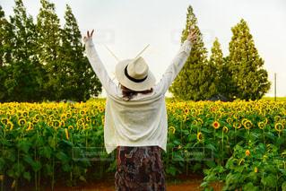 黄色い花の前に立っている人の写真・画像素材[2318357]