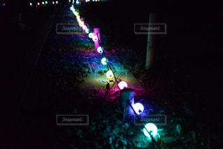 ライトアップの写真・画像素材[2399771]