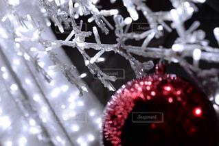 クリスマスの写真・画像素材[2802621]