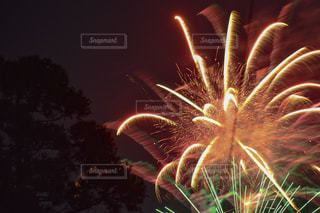 空の花火の写真・画像素材[2342528]