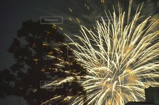 空の花火の写真・画像素材[2342531]