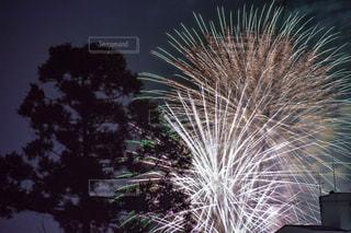 空の花火の写真・画像素材[2342536]