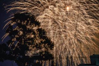 空の花火の写真・画像素材[2342537]