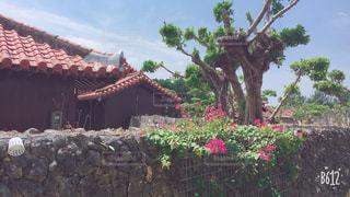 沖縄の写真・画像素材[2061472]