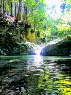 森の滝の写真・画像素材[2281654]