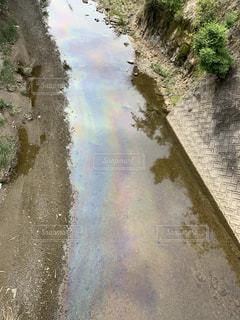汚川の写真・画像素材[2338439]