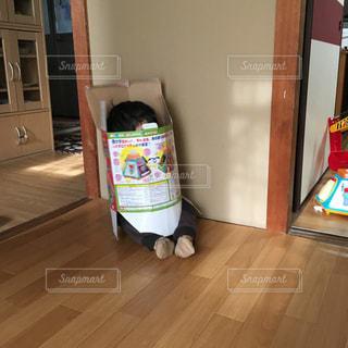 イタズラ大好きな子供の写真・画像素材[2338857]