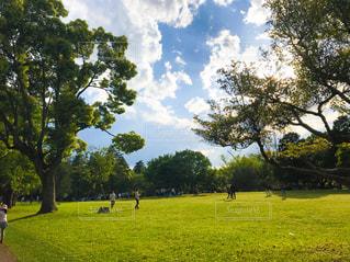 夕暮れ時の青空と公園の写真・画像素材[2080425]