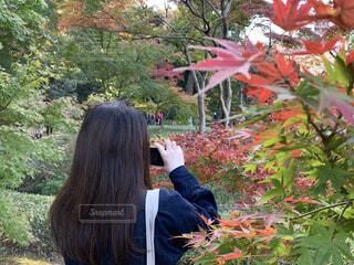 紅葉と彼女の写真・画像素材[3960131]