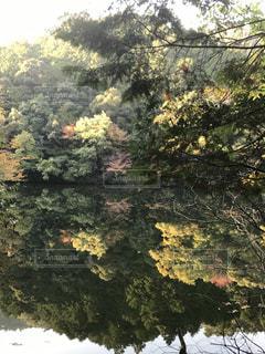 湖面に映る紅葉の写真・画像素材[2075213]