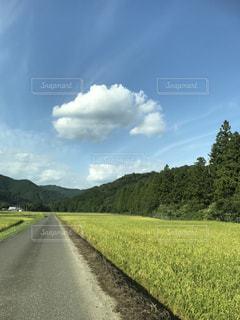 夏の緑な山と青い空と白い雲の写真・画像素材[2075271]