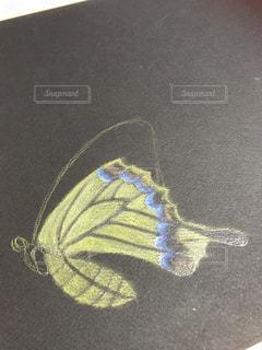 書き途中の揚羽蝶の写真・画像素材[2077337]