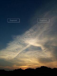 鳳凰の写真・画像素材[2072824]
