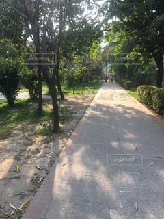 東南アジアの公園の写真・画像素材[2086555]